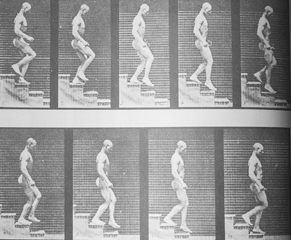 Una delle prime sequenze di movimento realizzata da Maybridge